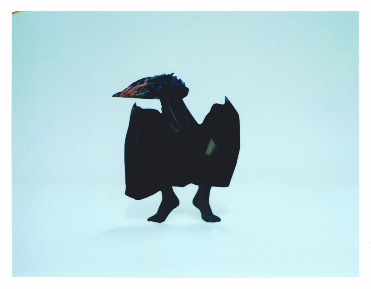 a strange, dark bat-like, bird-like creature with human feet stands on tiptoes against a pale blue background